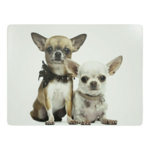 placemat chihuahua's (4)